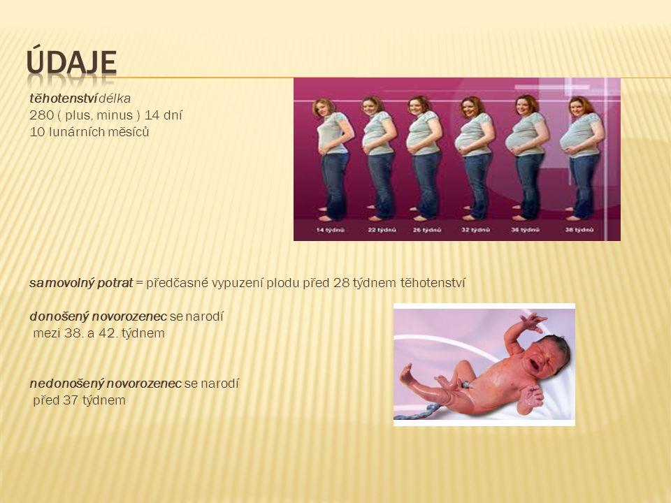 těhotenství délka 280 ( plus, minus ) 14 dní 10 lunárních měsíců samovolný potrat = předčasné vypuzení plodu před 28 týdnem těhotenství donošený novorozenec se narodí mezi 38.