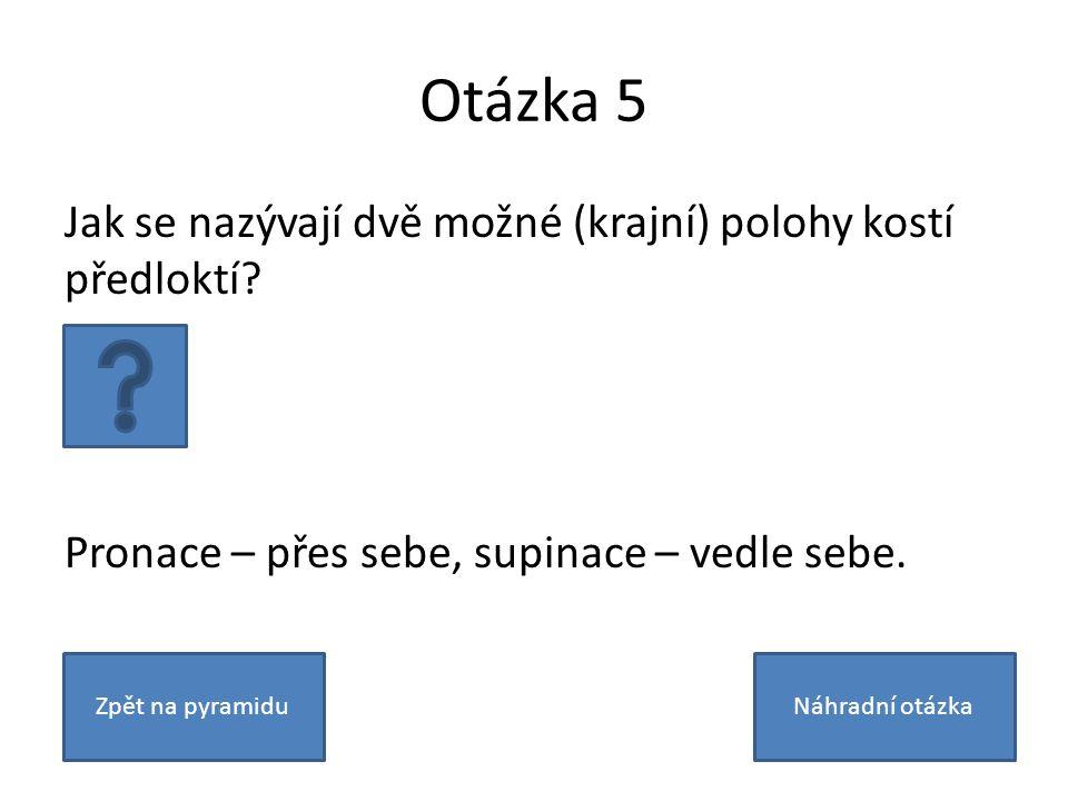 Otázka 5 Jak se nazývají dvě možné (krajní) polohy kostí předloktí.