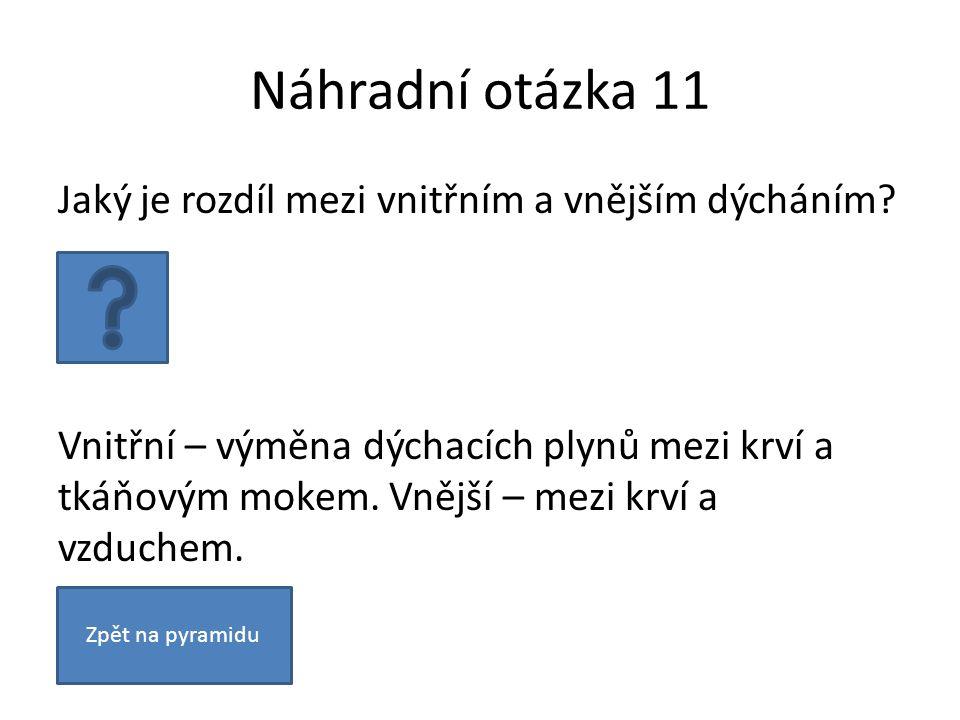 Náhradní otázka 11 Jaký je rozdíl mezi vnitřním a vnějším dýcháním.