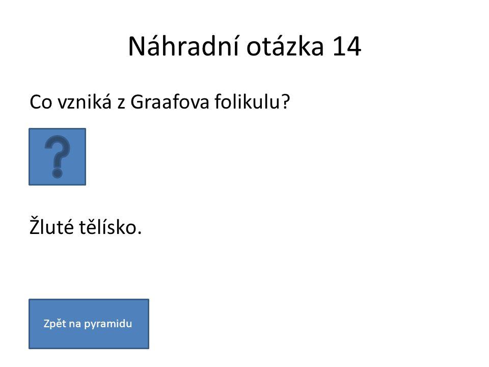 Náhradní otázka 14 Co vzniká z Graafova folikulu Žluté tělísko. Zpět na pyramidu