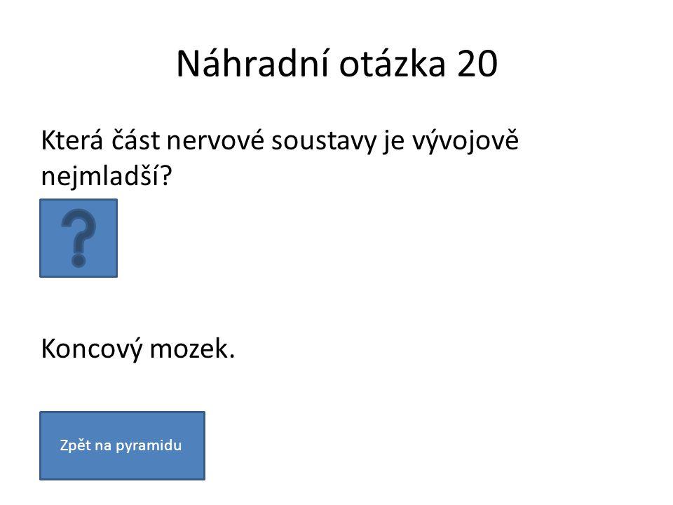 Náhradní otázka 20 Která část nervové soustavy je vývojově nejmladší.