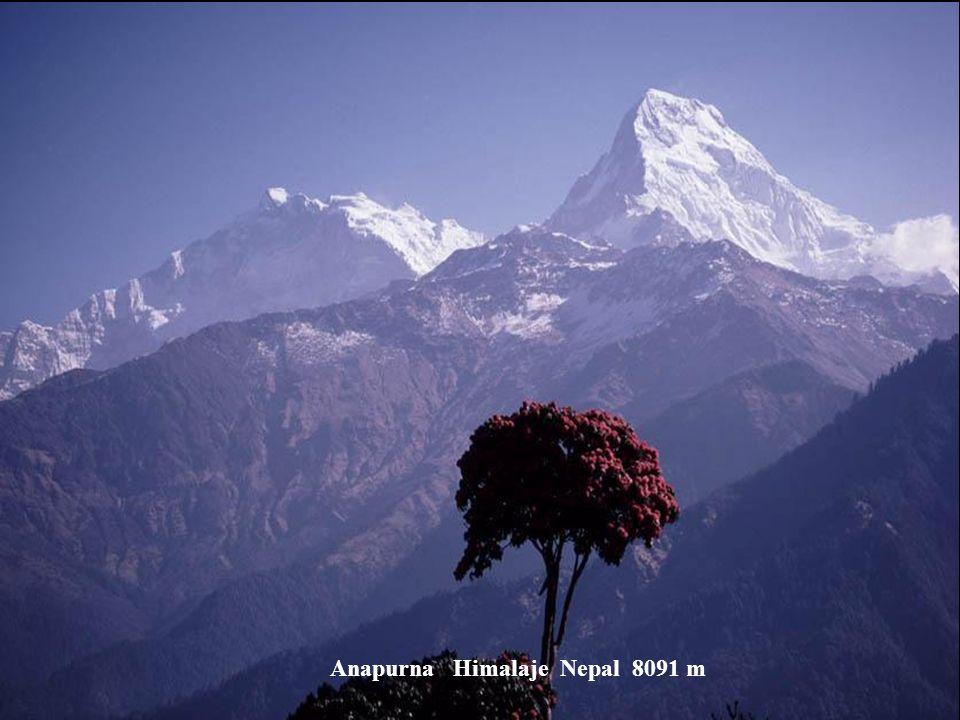Nanga Parbat Himalaje Pakistán 8125 m