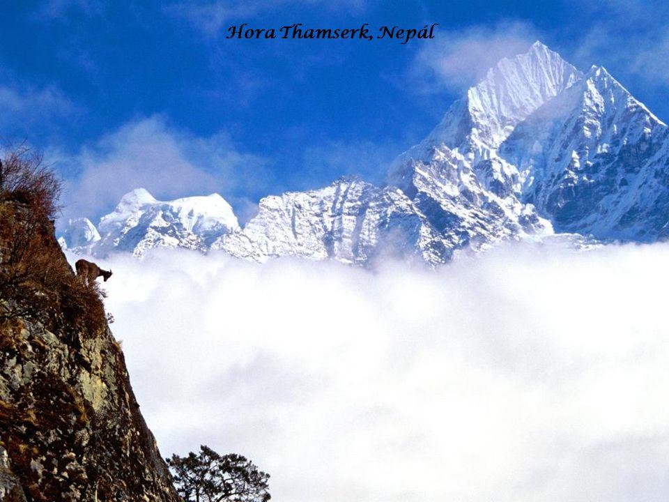 Hora Thamserk, Nepál
