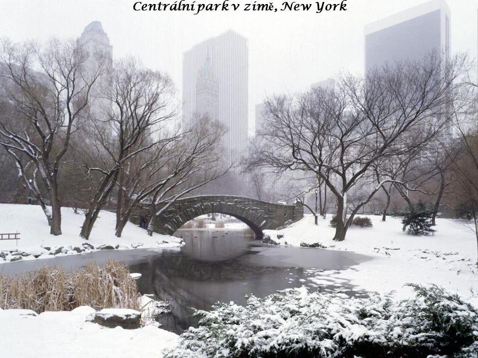 Centrální park v zim ě, New York