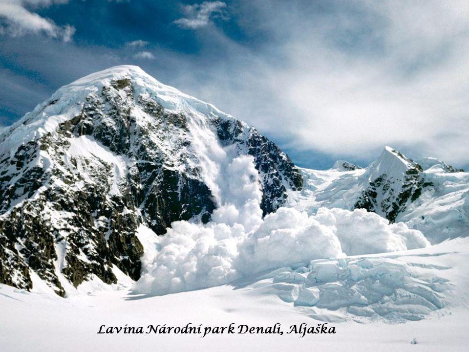Lavina Národní park Denali, Aljaška