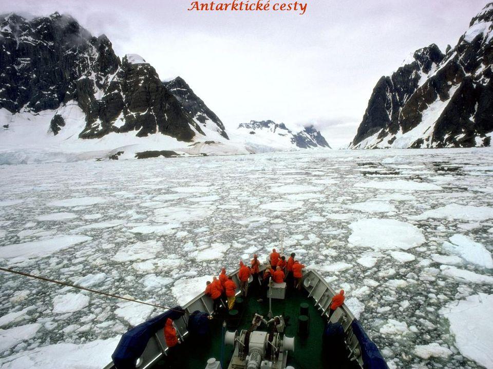Antarktické cesty