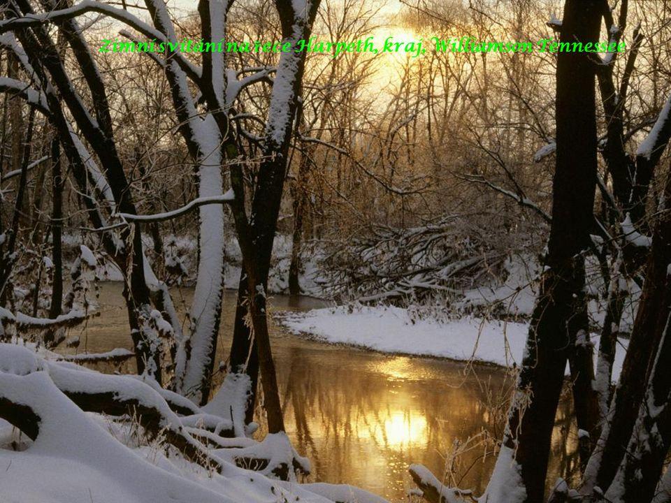 Zimní svítání na ř ece Harpeth, kraj, Williamson Tennessee
