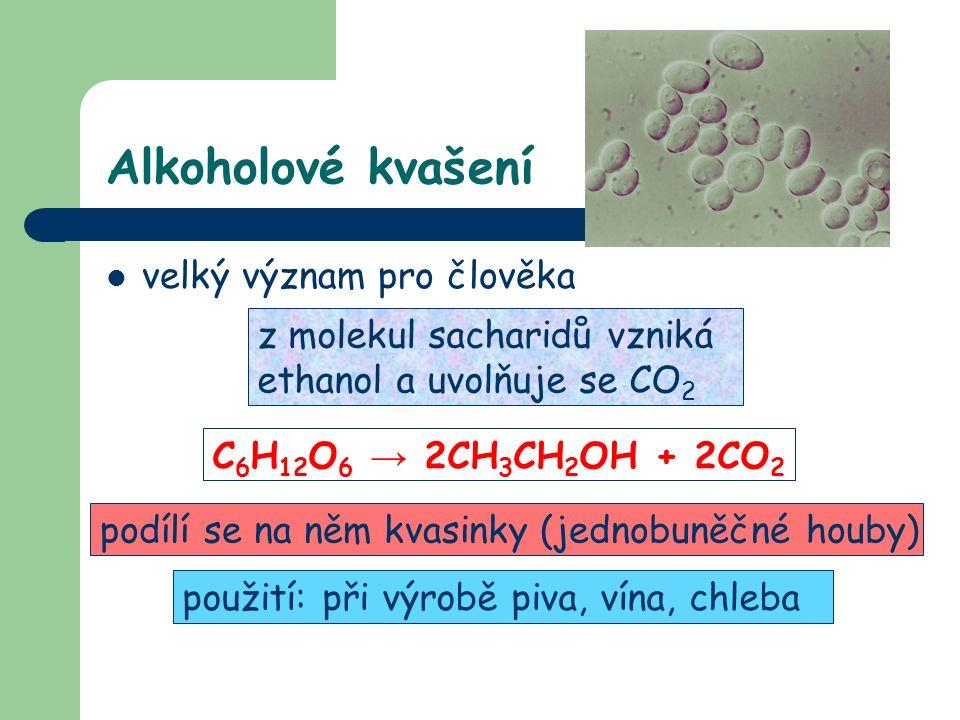 Alkoholové kvašení velký význam pro člověka z molekul sacharidů vzniká ethanol a uvolňuje se CO 2 C 6 H 12 O 6 → 2CH 3 CH 2 OH + 2CO 2 podílí se na něm kvasinky (jednobuněčné houby) použití: při výrobě piva, vína, chleba