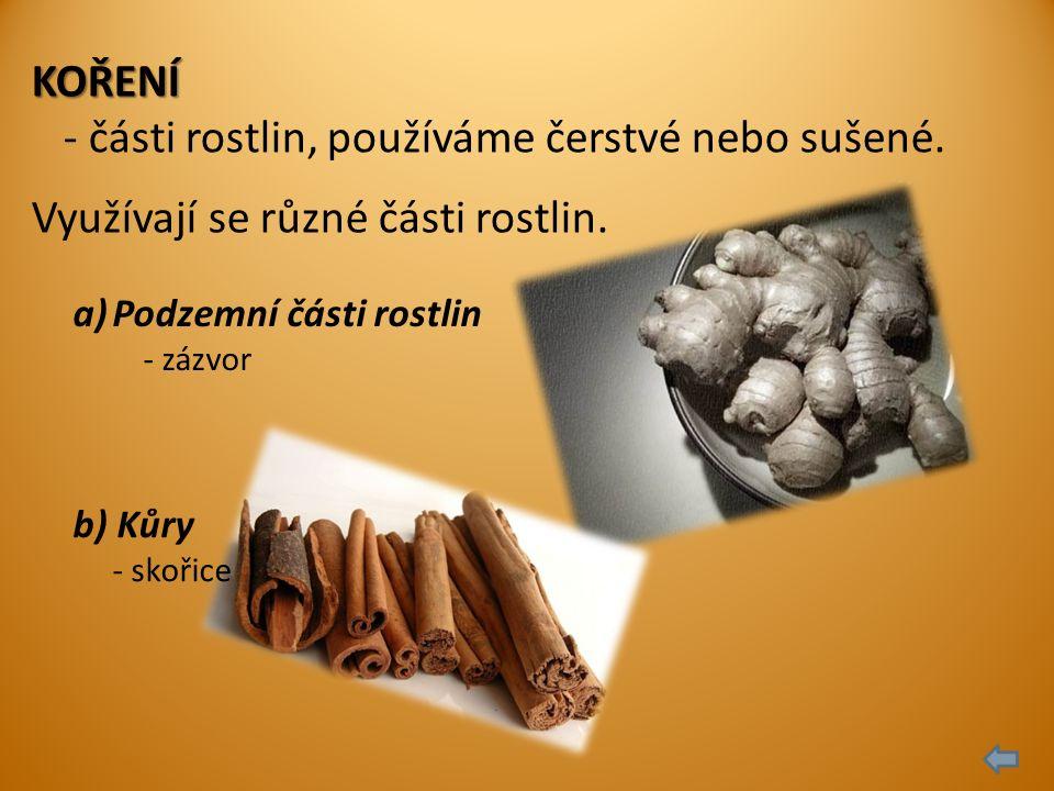 KOŘENÍ - části rostlin, používáme čerstvé nebo sušené.