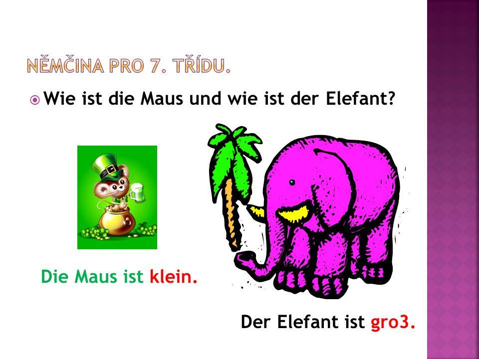  Wie ist die Maus und wie ist der Elefant Die Maus ist klein. Der Elefant ist gro3.