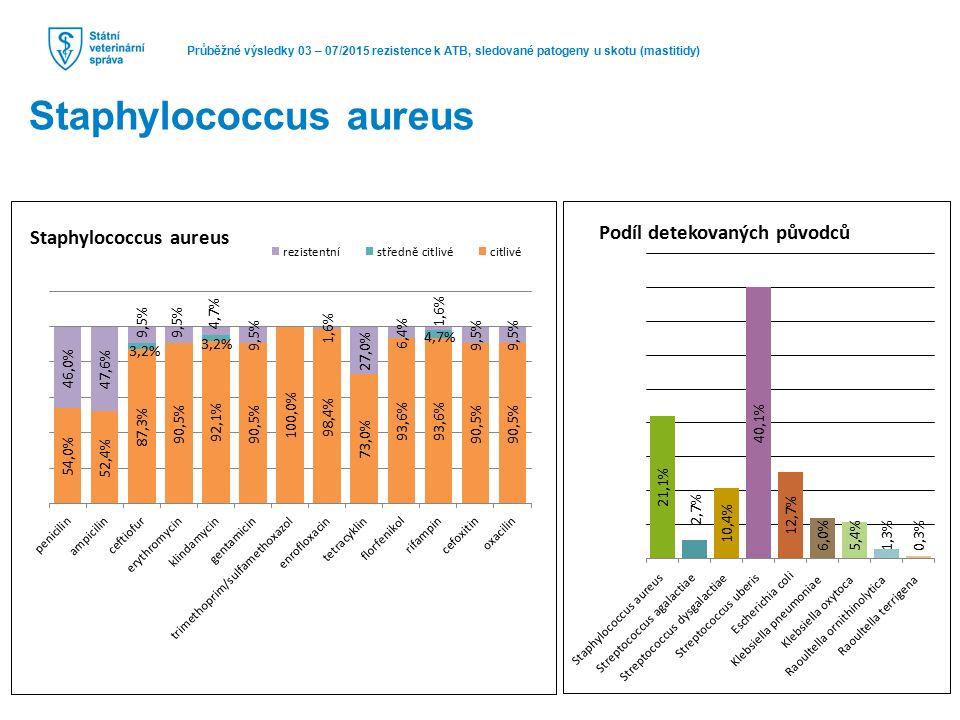 Průběžné výsledky 03 – 07/2015 rezistence k ATB, sledované patogeny u skotu (mastitidy) Staphylococcus aureus