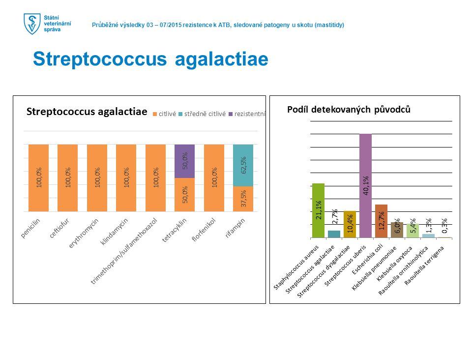 Průběžné výsledky 03 – 07/2015 rezistence k ATB, sledované patogeny u skotu (mastitidy) Streptococcus agalactiae