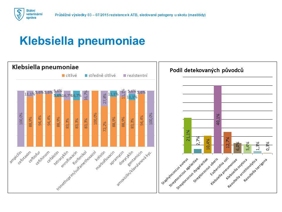 Průběžné výsledky 03 – 07/2015 rezistence k ATB, sledované patogeny u skotu (mastitidy) Klebsiella pneumoniae