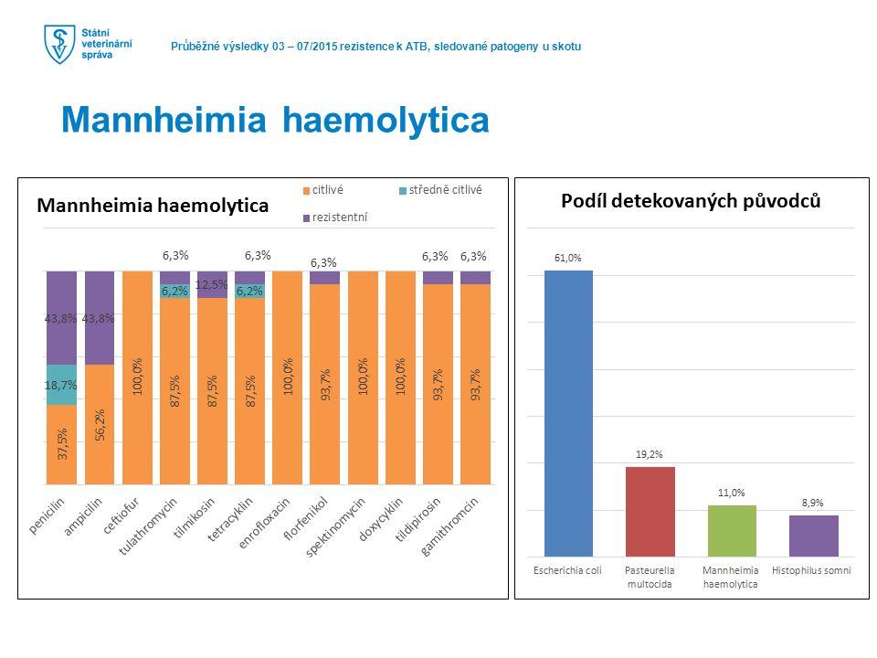 Průběžné výsledky 03 – 07/2015 rezistence k ATB, sledované patogeny u skotu Mannheimia haemolytica