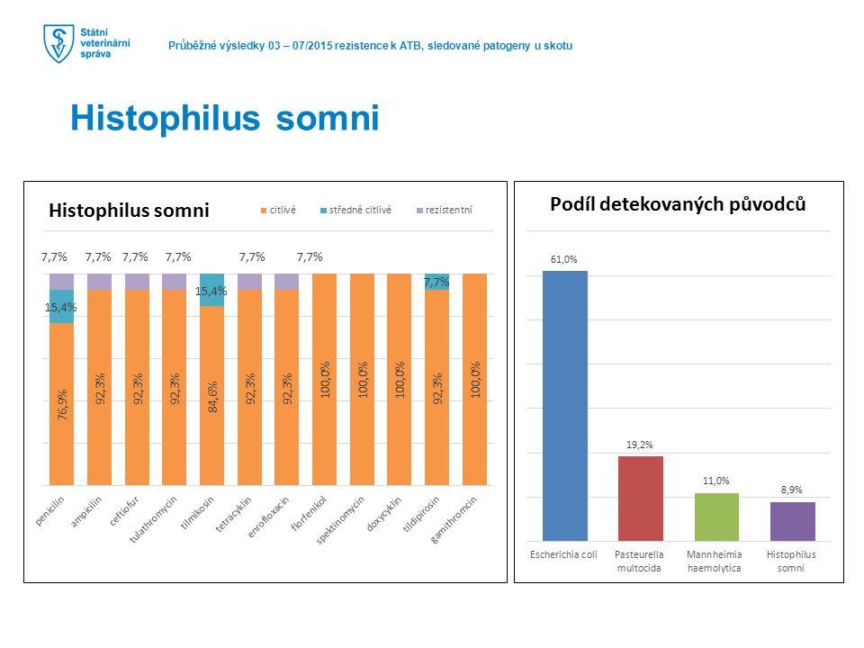 Průběžné výsledky 03 – 07/2015 rezistence k ATB, sledované patogeny u skotu Histophilus somni