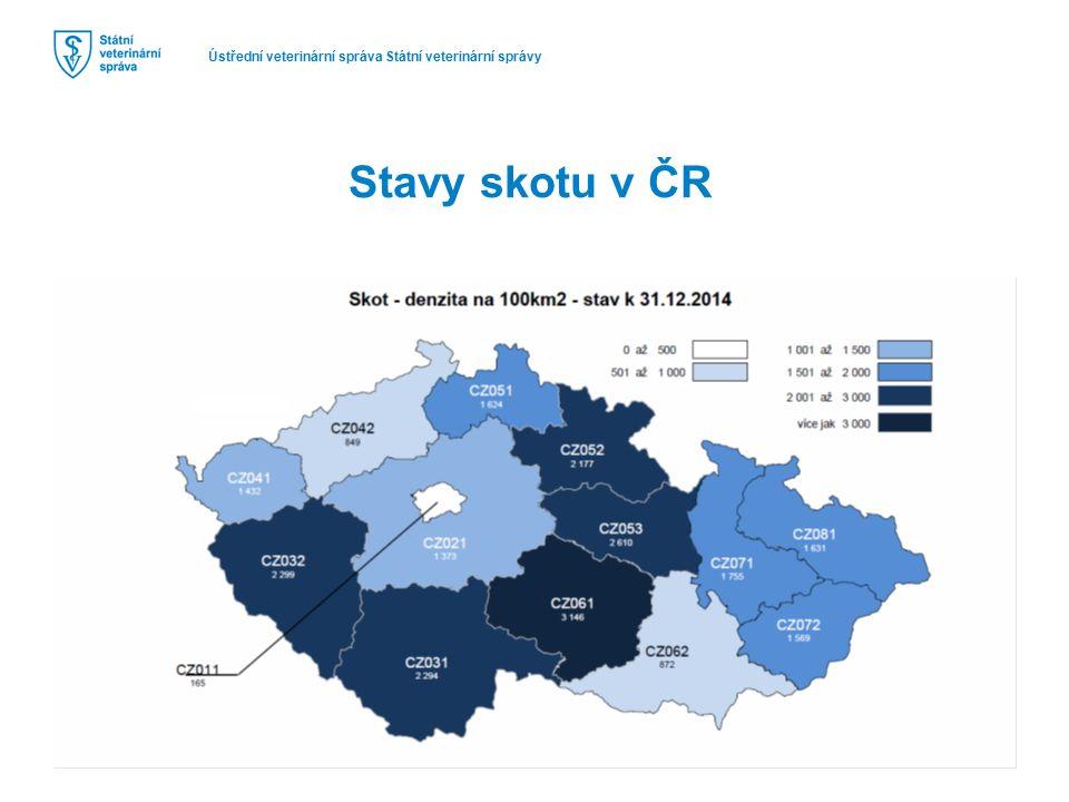 Ústřední veterinární správa Státní veterinární správy Stavy skotu v ČR