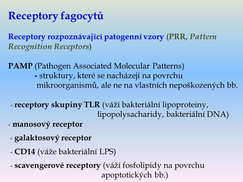 Receptory fagocytů Receptory rozpoznávající patogenní vzory (PRR, Pattern Recognition Receptors ) PAMP (Pathogen Associated Molecular Patterns) - struktury, které se nacházejí na povrchu mikroorganismů, ale ne na vlastních nepoškozených bb.