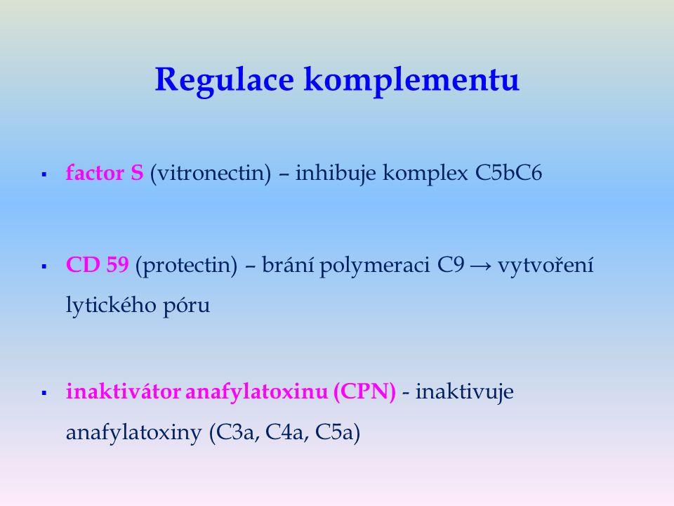 Regulace komplementu   factor S (vitronectin) – inhibuje komplex C5bC6   CD 59 (protectin) – brání polymeraci C9 → vytvoření lytického póru   inaktivátor anafylatoxinu (CPN) - inaktivuje anafylatoxiny (C3a, C4a, C5a)