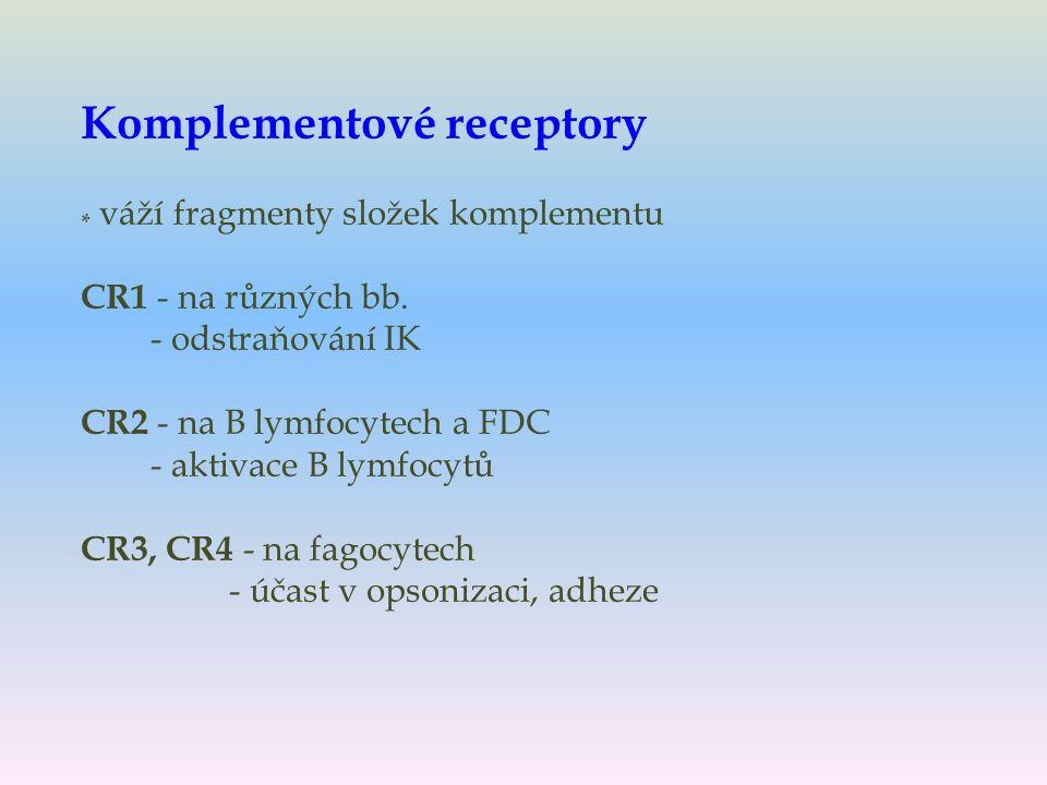 Komplementové receptory * váží fragmenty složek komplementu CR1 - na různých bb.