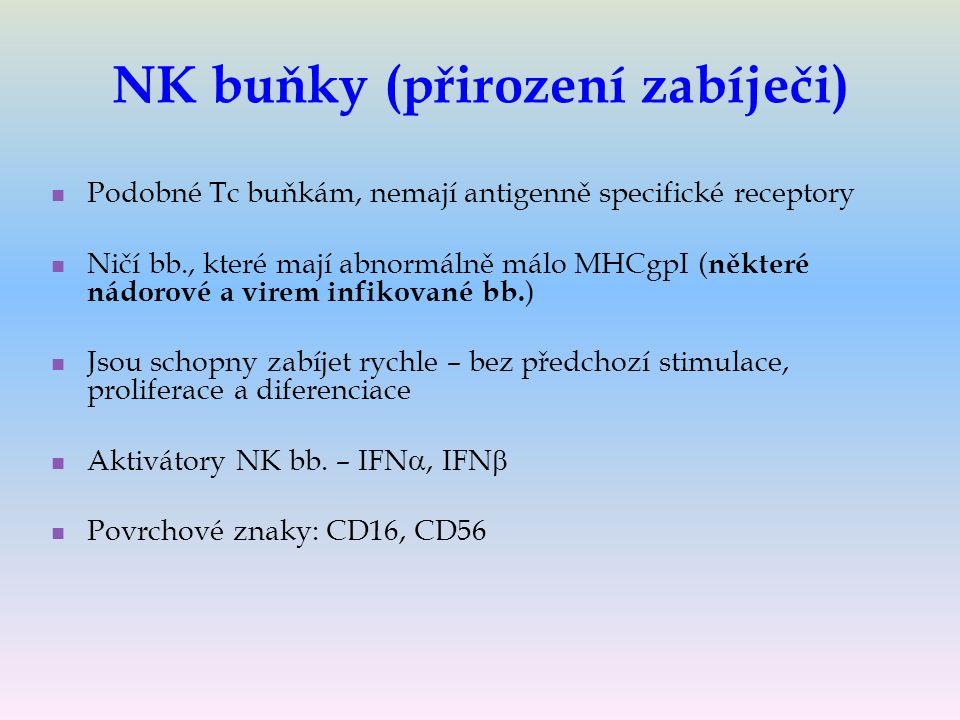 NK buňky (přirození zabíječi) Podobné Tc buňkám, nemají antigenně specifické receptory Ničí bb., které mají abnormálně málo MHCgpI ( některé nádorové a virem infikované bb.