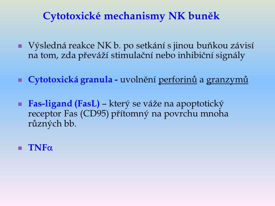 Výsledná reakce NK b.