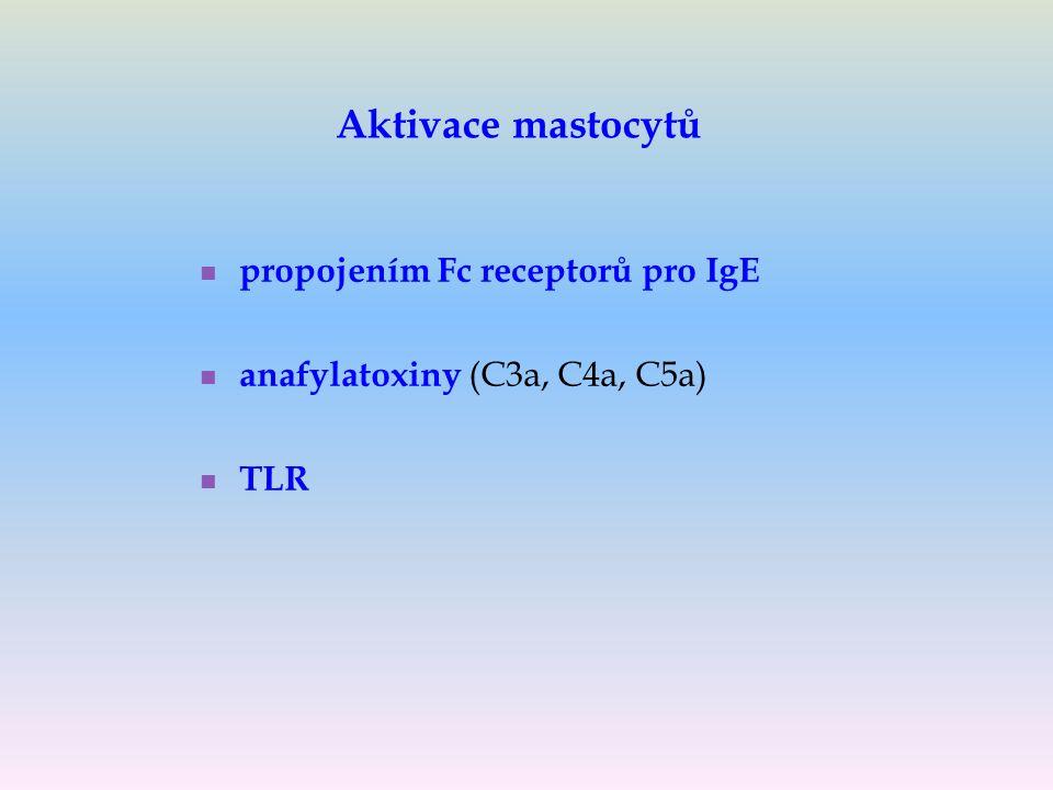 Aktivace mastocytů propojením Fc receptorů pro IgE anafylatoxiny (C3a, C4a, C5a) TLR