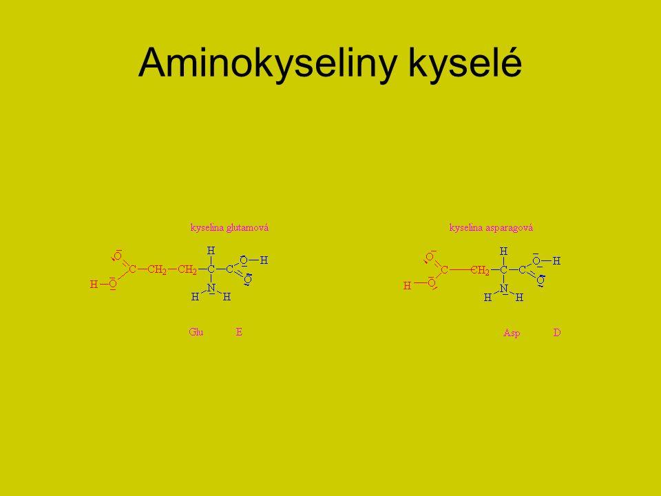 Aminokyseliny kyselé