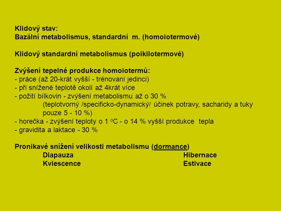 Klidový stav: Bazální metabolismus, standardní m.