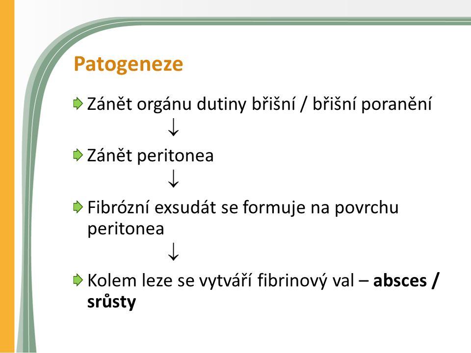 Patogeneze Zánět orgánu dutiny břišní / břišní poranění  Zánět peritonea  Fibrózní exsudát se formuje na povrchu peritonea  Kolem leze se vytváří fibrinový val – absces / srůsty
