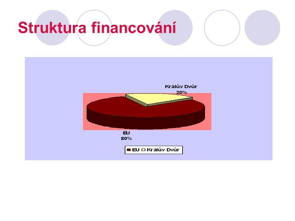 Struktura financování