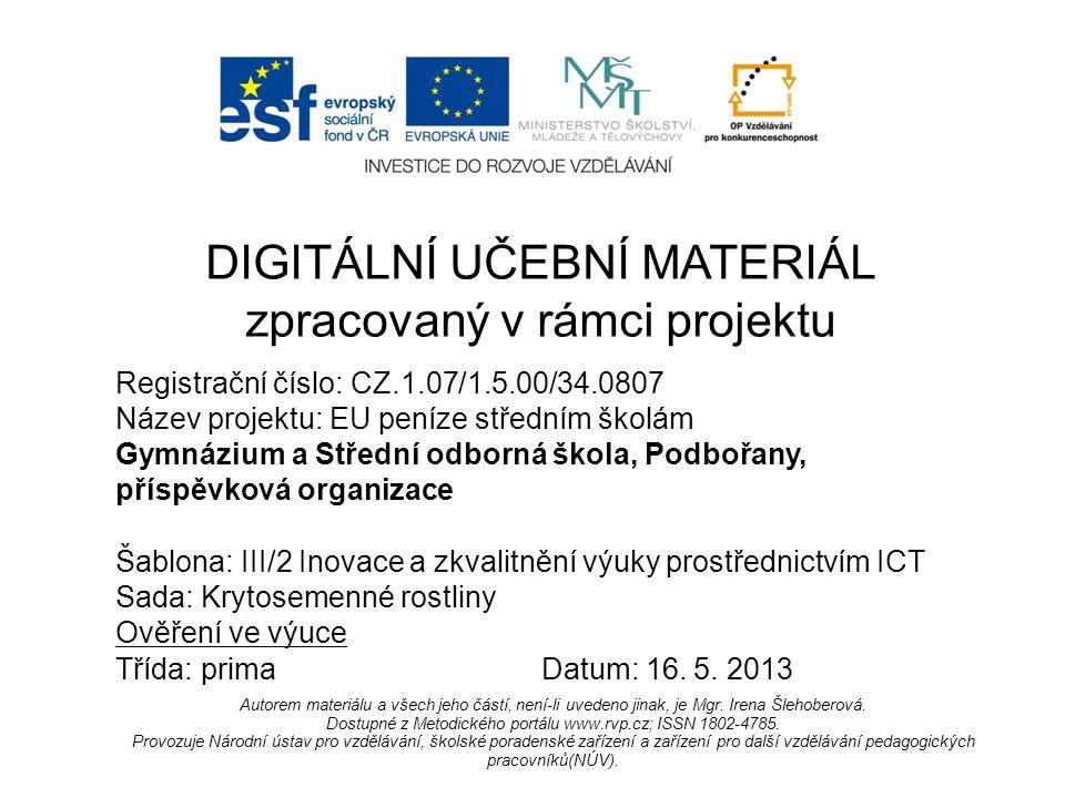 Registrační číslo: CZ.1.07/1.5.00/34.0807 Název projektu: EU peníze středním školám Gymnázium a Střední odborná škola, Podbořany, příspěvková organizace Šablona: III/2 Inovace a zkvalitnění výuky prostřednictvím ICT Sada: Krytosemenné rostliny Ověření ve výuce Třída: primaDatum: 16.