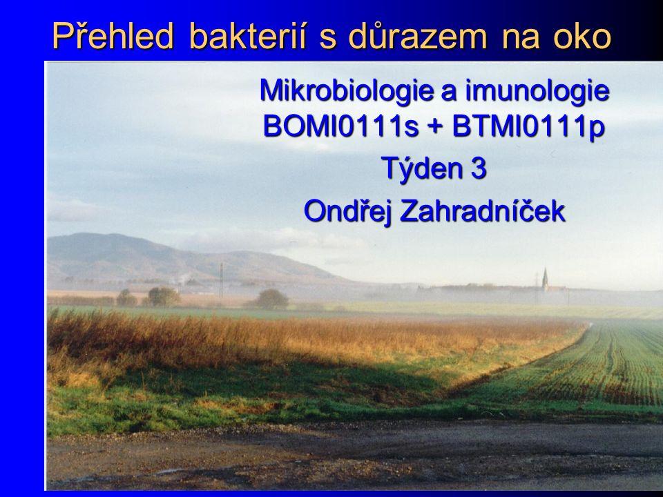 Přehled bakterií s důrazem na oko Mikrobiologie a imunologie BOMI0111s + BTMI0111p Týden 3 Ondřej Zahradníček