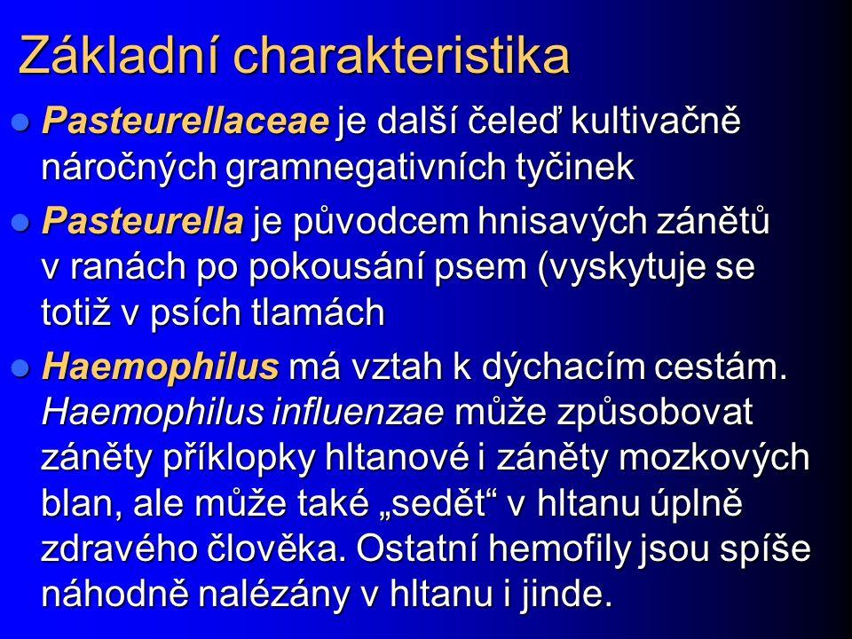 Základní charakteristika Pasteurellaceae je další čeleď kultivačně náročných gramnegativních tyčinek Pasteurellaceae je další čeleď kultivačně náročných gramnegativních tyčinek Pasteurella je původcem hnisavých zánětů v ranách po pokousání psem (vyskytuje se totiž v psích tlamách Pasteurella je původcem hnisavých zánětů v ranách po pokousání psem (vyskytuje se totiž v psích tlamách Haemophilus má vztah k dýchacím cestám.