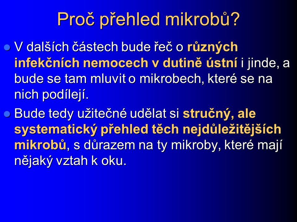 www.medmicro.info Mikrokoky a kocurie Děkuji za pozornost