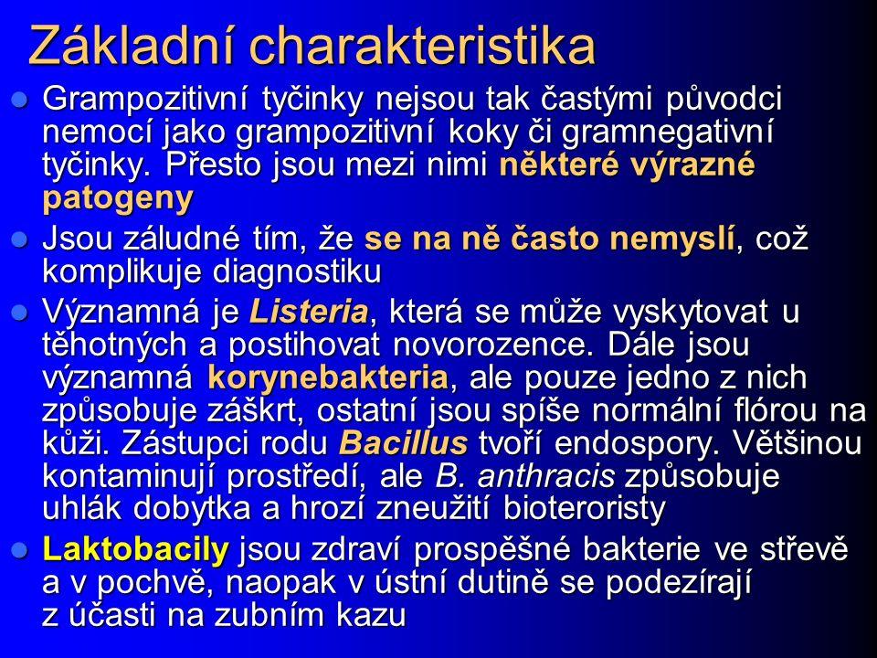 Základní charakteristika Grampozitivní tyčinky nejsou tak častými původci nemocí jako grampozitivní koky či gramnegativní tyčinky.