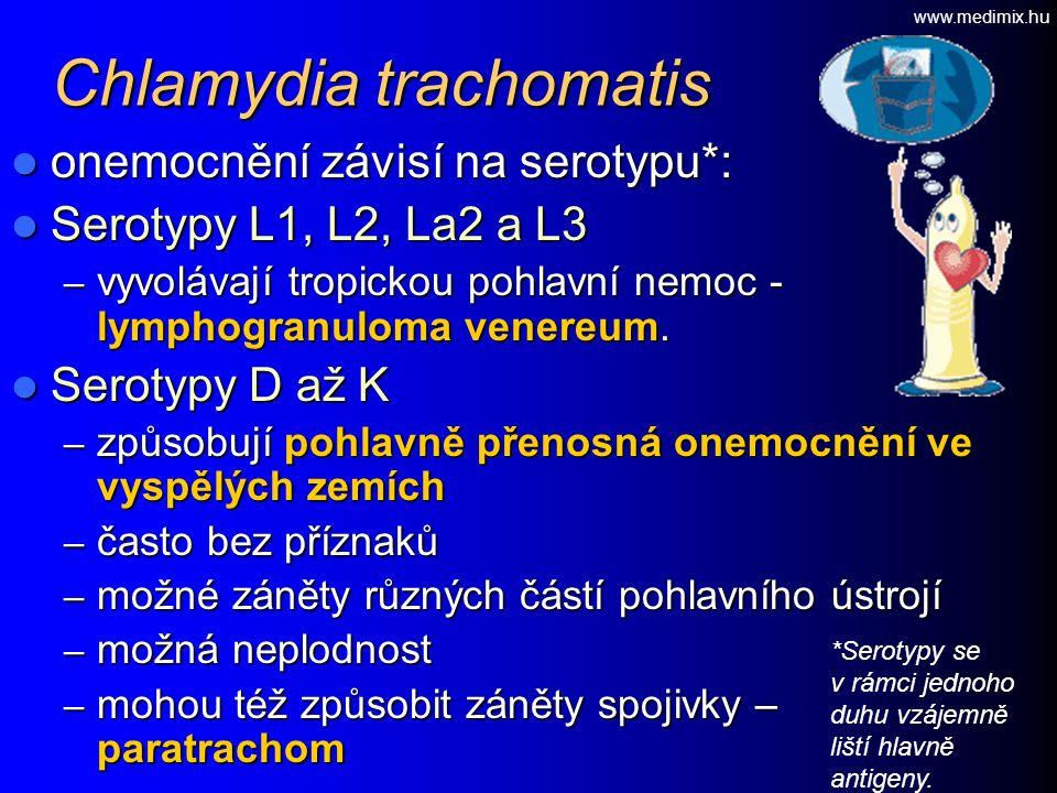Chlamydia trachomatis onemocnění závisí na serotypu*: onemocnění závisí na serotypu*: Serotypy L1, L2, La2 a L3 Serotypy L1, L2, La2 a L3 – vyvolávají tropickou pohlavní nemoc - lymphogranuloma venereum.