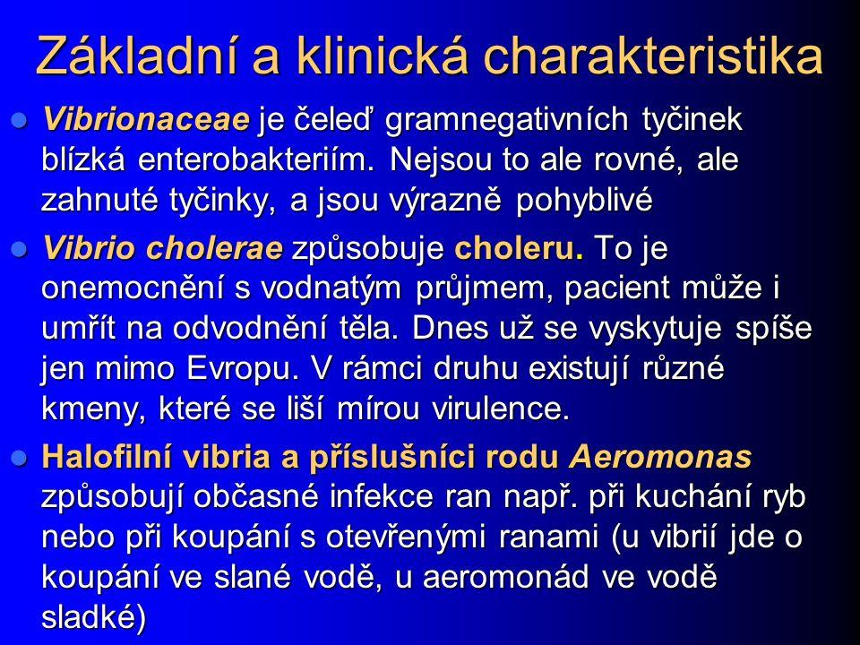 13. Klostridia http://de.wikipedia.org