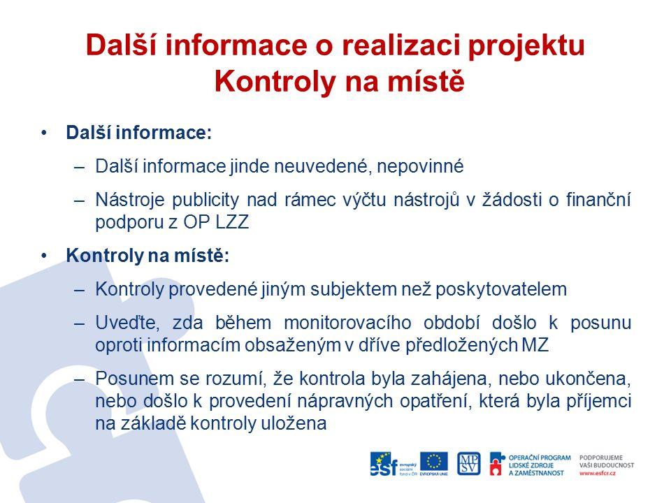 Další informace o realizaci projektu Kontroly na místě Další informace: –Další informace jinde neuvedené, nepovinné –Nástroje publicity nad rámec výčt