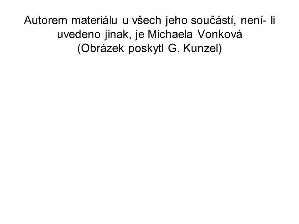 Autorem materiálu u všech jeho součástí, není- li uvedeno jinak, je Michaela Vonková (Obrázek poskytl G. Kunzel)
