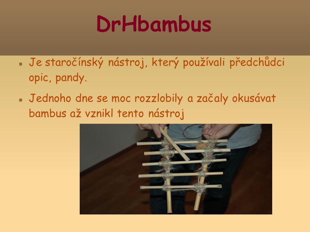 DrHbambus Je staročínský nástroj, který používali předchůdci opic, pandy.