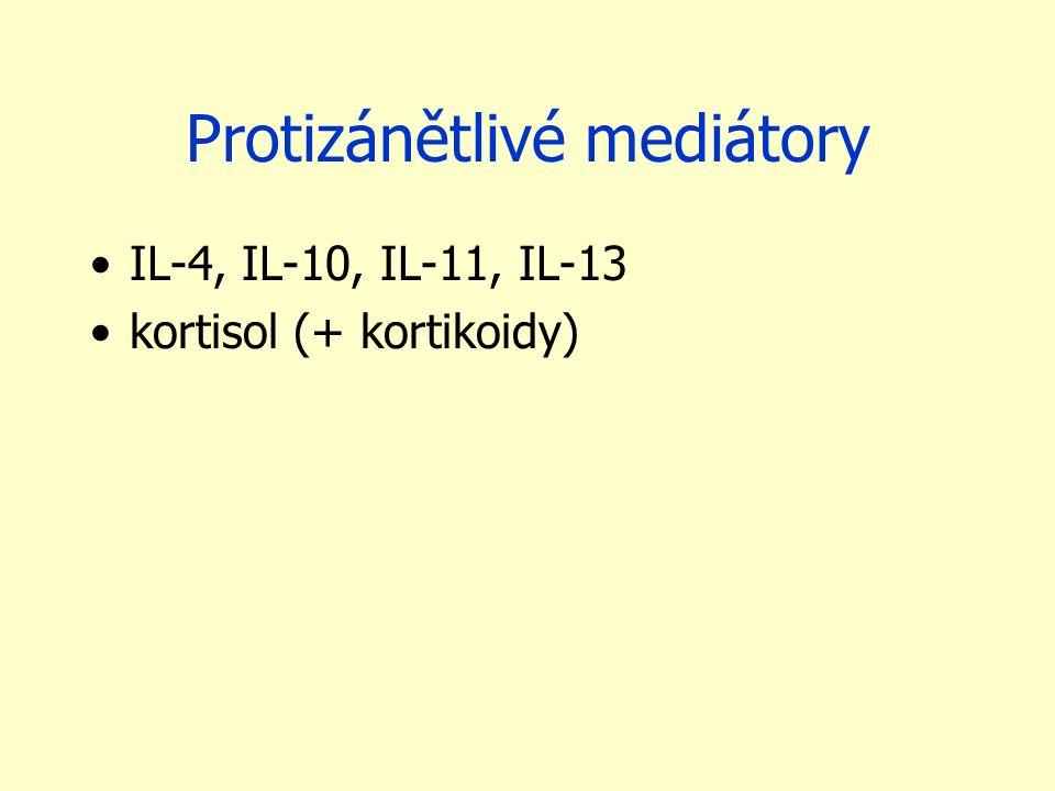 Protizánětlivé mediátory IL-4, IL-10, IL-11, IL-13 kortisol (+ kortikoidy)