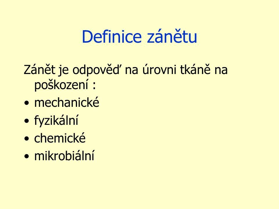 Terminologie koncovka -itis (výjimka: pneumonie) 2.