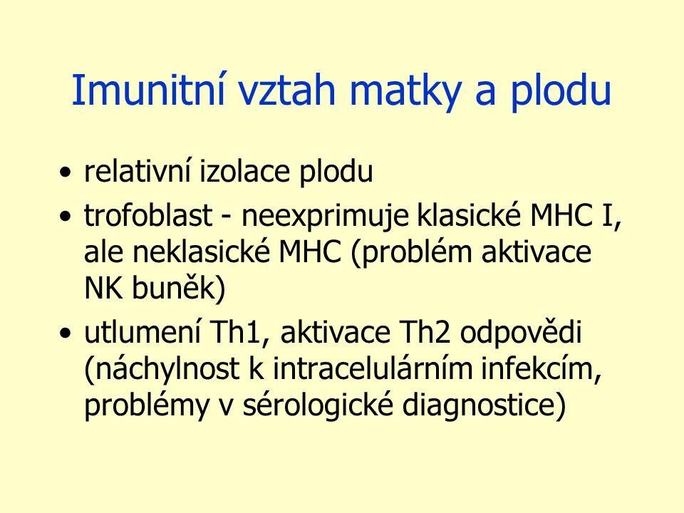 Imunitní vztah matky a plodu relativní izolace plodu trofoblast - neexprimuje klasické MHC I, ale neklasické MHC (problém aktivace NK buněk) utlumení Th1, aktivace Th2 odpovědi (náchylnost k intracelulárním infekcím, problémy v sérologické diagnostice)