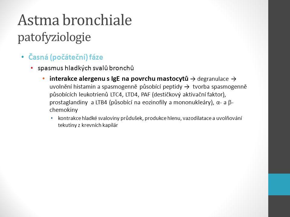 Astma bronchiale patofyziologie Pozdní fáze nastává v různé době po expozici provokující noxe rozvíjející se zánětlivá reakce (její začátek nastal již v časné fázi) infiltrace obvyklých zánětlivých buněk, ale i specificky aktivovaných Th2 lymfocytů a eozinofilů → uvolnění mediátorů → poškození a odlupování bronchiálního epitelu → obnažení nervových zakončení a vláken → hypereaktivita uvolněné růstové faktory z infultrujích cbuněk → hypertrofie a hperplazie hladkého svalu bronchů → zesílení bronchiální svaloviny → zúžení průsvitu bronchů a kontrakční a sekreční hypereaktivita Status asthmaticus: stav ohrožující život pacienta, obstrukce dýchacích cest nemusí být včas reverzibilní → může skončit az exitems pacienta