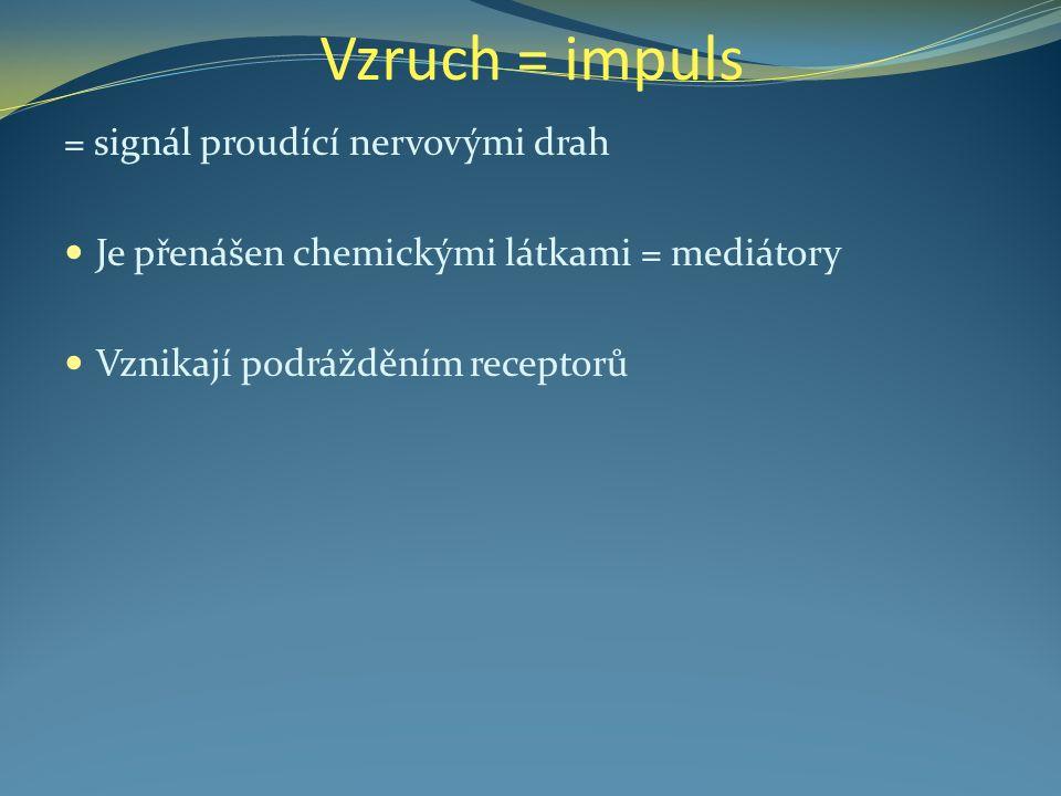 Vzruch = impuls = signál proudící nervovými drah Je přenášen chemickými látkami = mediátory Vznikají podrážděním receptorů
