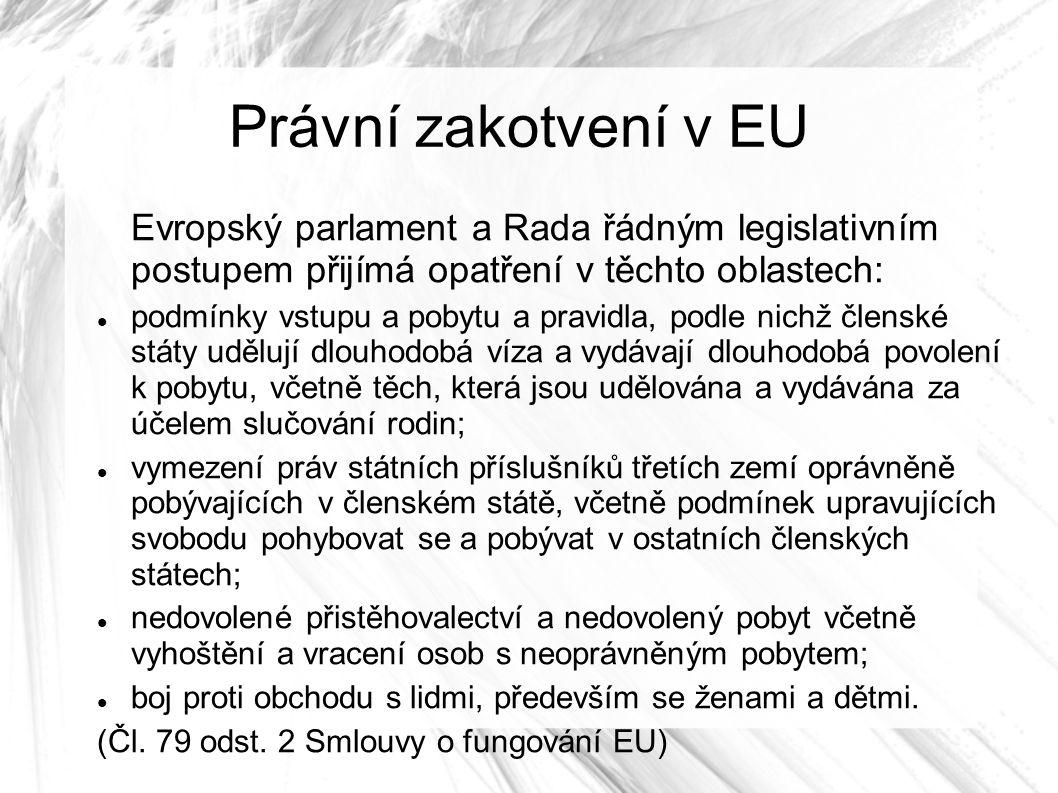 Právní zakotvení v EU Evropský parlament a Rada řádným legislativním postupem přijímá opatření v těchto oblastech: podmínky vstupu a pobytu a pravidla, podle nichž členské státy udělují dlouhodobá víza a vydávají dlouhodobá povolení k pobytu, včetně těch, která jsou udělována a vydávána za účelem slučování rodin; vymezení práv státních příslušníků třetích zemí oprávněně pobývajících v členském státě, včetně podmínek upravujících svobodu pohybovat se a pobývat v ostatních členských státech; nedovolené přistěhovalectví a nedovolený pobyt včetně vyhoštění a vracení osob s neoprávněným pobytem; boj proti obchodu s lidmi, především se ženami a dětmi.