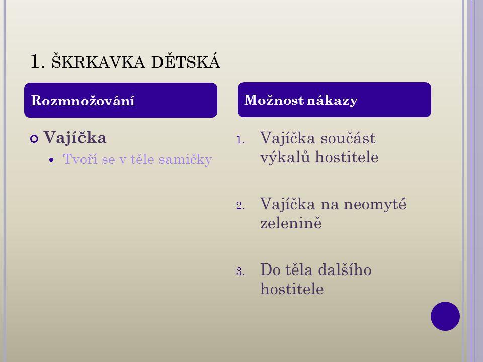 1. ŠKRKAVKA DĚTSKÁ Vajíčka Tvoří se v těle samičky 1.