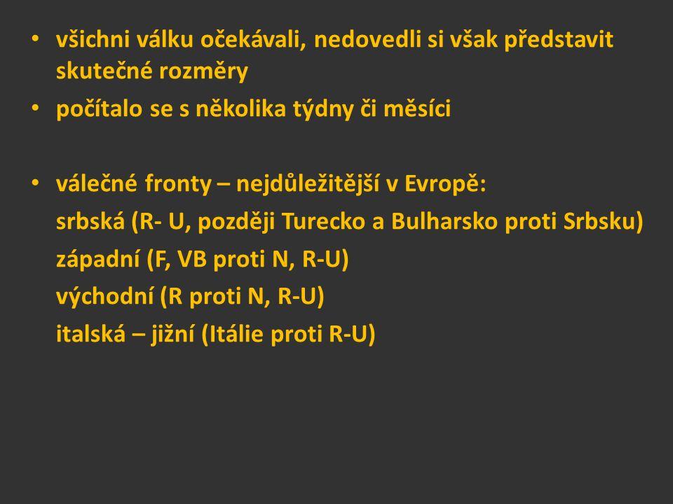 všichni válku očekávali, nedovedli si však představit skutečné rozměry počítalo se s několika týdny či měsíci válečné fronty – nejdůležitější v Evropě: srbská (R- U, později Turecko a Bulharsko proti Srbsku) západní (F, VB proti N, R-U) východní (R proti N, R-U) italská – jižní (Itálie proti R-U)