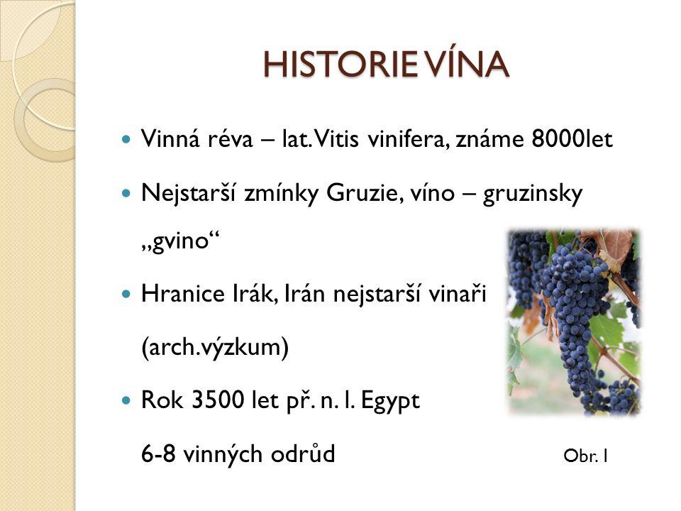 HISTORIE VÍNA Vinná réva – lat.