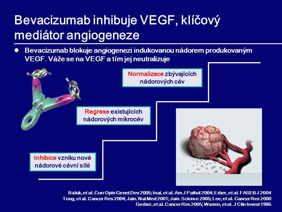 Bevacizumab inhibuje VEGF, klíčový mediátor angiogeneze Bevacizumab blokuje angiogenezi indukovanou nádorem produkovaným VEGF.